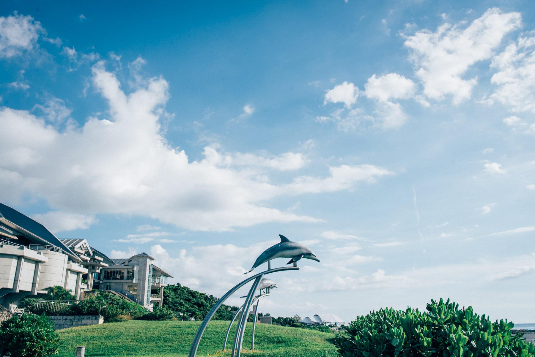 沖縄旅行2日目。水納島のエメラルドグリーンに魅せられ、美ら海のジンベイザメに自分のちっぽけさを見せつけられる。